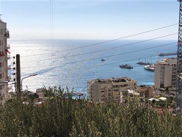 Limitrophe Monaco, vue mer