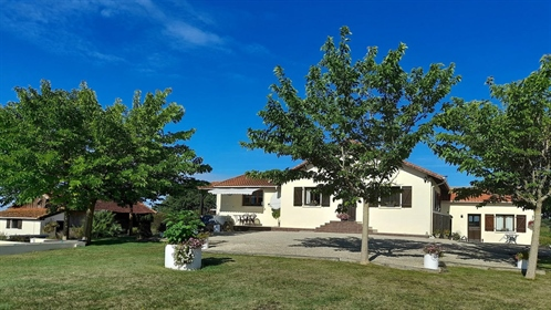 Beautifully Renovated Farmhouse With Guest Accommodation Surrounded By Vineyards