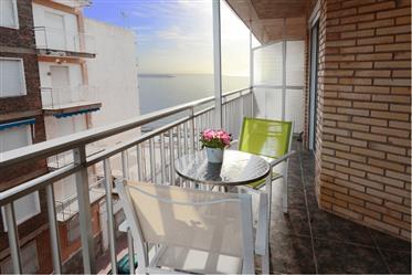 Apartamento: 80 m²