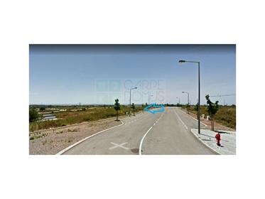 Terreno: 555 m²: 450 m²