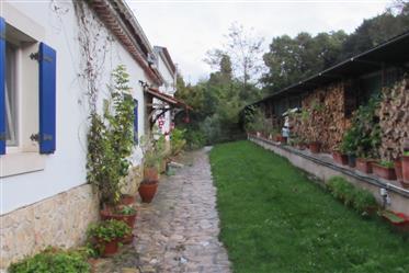 Petite ferme à Sancheira Grande - Óbidos