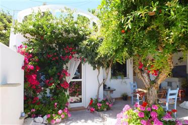 Maison traditionnelle dans le sud-est de la Crète avec jardi...