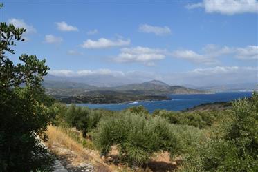 Istron-Agios Nikolaos: Un terrain de 2000m2 bénéficiant d'une vue imprenable sur la mer et les monta