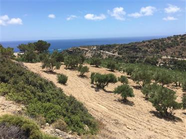 Plot of land of 4000m2 with lovely mountain and sea views.