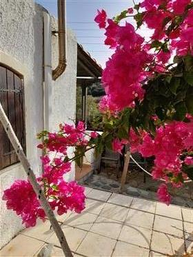 A beautiful house with garden very near to the sea.