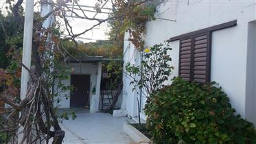 House of 100m2 with garden in Sfaka near the village Mochlos.