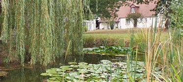Mardie, proche Canal, belle propriété sur 1,2ha de parc avec plan d'eau. Dépendances