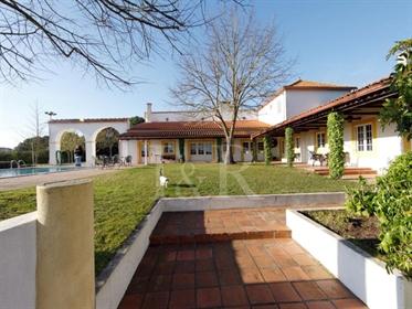 Casa: 362 m²