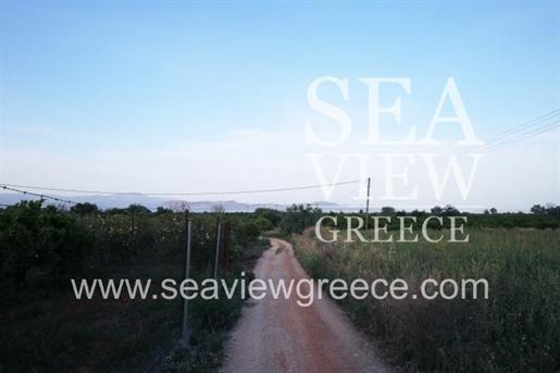 Agricaltural, 4000 sq, for sale