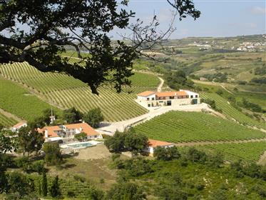 Maravilhosa Quinta na região de Lisboa
