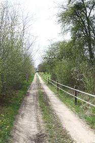 Propriété sur 13 hectares