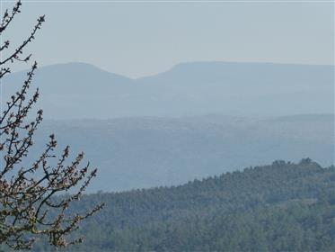 92 ha avec Oliverai, Amenderaie, Chêne-liège et terrain de chasse. Portugal, Bragança, T. Moncorvo.
