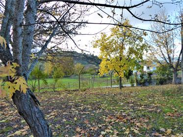 Somptueuse maison 9 pièces. Portugal, nord, Mirandela.
