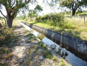 1 150 000 m2 terra cultivo e água de canal. Portugal, Beja, ...