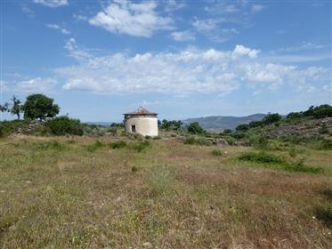 250 000 m² de terre isolée et ruines. Portugal, Barca d'Alva, F. C. Rodrigo.
