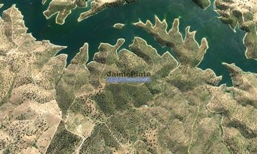 490 ha, Caça, Eucalipto, Agricultura, Turismo. Portugal, Évora, Reguengos de Monsaraz.