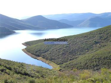 30,38Ha pour les plantations d'amandiers et d'oliviers. Portugal, Bragança, A. Da Fé