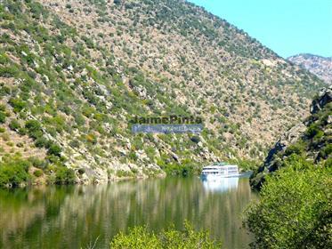 Propriedade 90 ha, vinha, casas, adega, rio Douro. Portugal, Douro, V. N. Foz Côa.