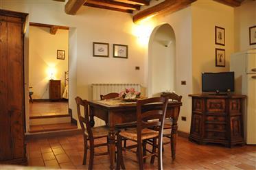 V casale con appartamenti Siena