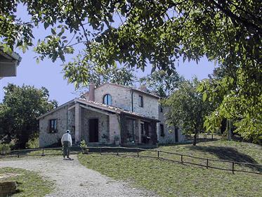 V 382019 farmhouse in Maremma