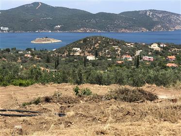 Οικόπεδο με θέα στο ΛΕΜΟΝΙ-δάσος