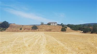 Terreno com uma ruína e elevado potencial de reconstrução.