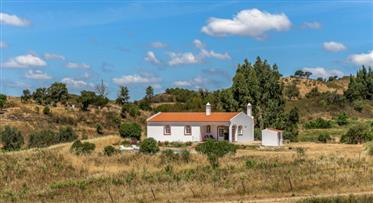 Quinta with about 5 hectares located in a very quiet area an...