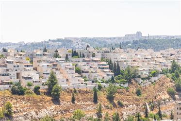 Kiryat HaYovel - 4 Pieces