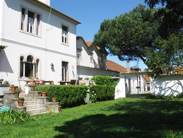 Quinta com vinha, Casa do séc. Xix com belíssimos pormenores arquitetónicos