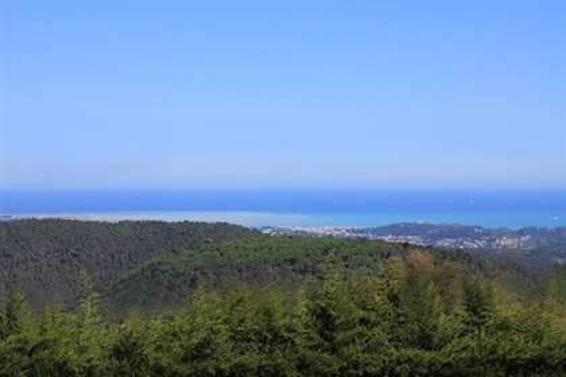 Tourrettes sur Loup - Stunning panoramic sea view villa - B&B and lodgings