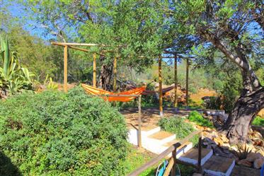Algarve - Loulé - Moradia T2 para venda, com piscina e belos jardins