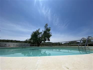 Large property with swimming pool