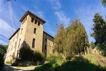 Villa Nobiliare Con Torretta - Villa Schine
