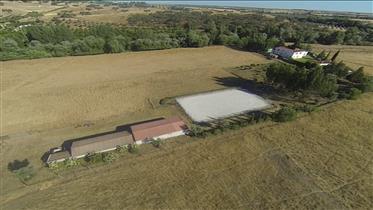 Farm In Alentejo