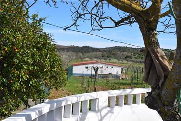 Farm In Alentejo - Portugal