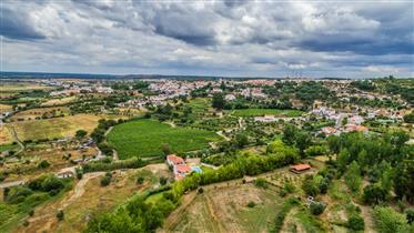 Quinta de sonho - Alentejo - Portugal