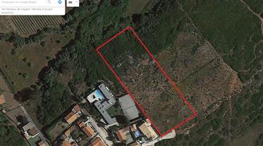 Terreno para Construção  Azoia