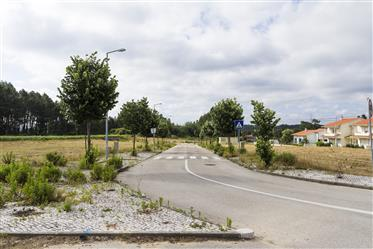 18 lots de terrain à vendre a Paião - Coimbra