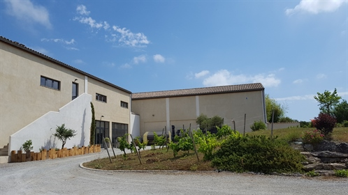 Wine Tourism At The Gates Of CARCASSONNE  This 11 ha property is found in a peaceful setti