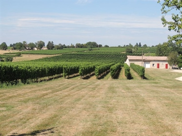 Fully operational and well structured Bordeaux vineyard with owner& 039 s house and separate manager