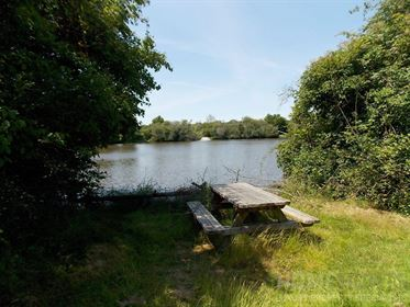 A thriving and well established business combining successful leisure fishing and property rentals.
