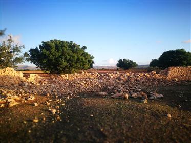 Projet de tourisme touristique  700 M² Terrain 3877 m²