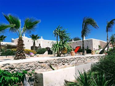 Belle maison 330 m² Jardin 100000