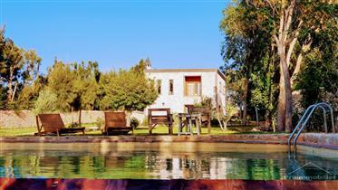 18-03-03-Vm Maison moderne 420m² Jardin 5000 m² sans Avna