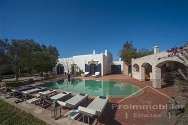 Belle villa Beldi rénovée 220 m² Jardin 2723 m²