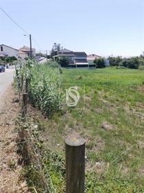 Grundstück: 1.380 m²: 1.380 m²