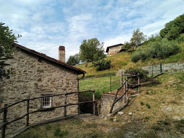 Foresto Sparso - Charming Single Country House Just 15 minutes from the lake