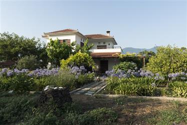 Villa Λεχώνια, Άγιος Μηνάς