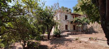 Πέτρινη παραδοσιακή κατοικία στον Πλατανιά, Πήλιο