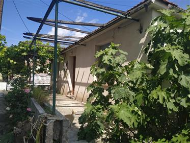 Μονοκατοικία στην Αγριά, δίπλα στη θάλασσα